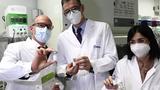 T&T Group xúc tiến mua 50 triệu liều vắc xin phòng Covid-19 từ châu Âu