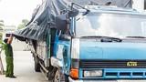 Bắt quả tang xe tải đổ trộm chất thải ở Đồng Nai