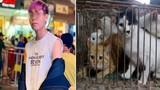 Thanh niên mua mèo về nuôi đem bán cho lò mổ khiến CĐM phẫn nộ