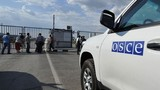 Quan sát viên OSCE rời biên giới Nga do đạn pháo Ukraine