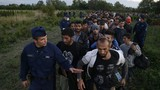 Hungary tái mở cửa khẩu với Serbia cho người tị nạn