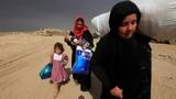Ảnh: Thường dân Iraq lũ lượt chạy khỏi thành phố Mosul