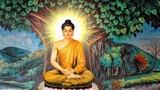 """Phật dạy: """"Nhất niệm phóng hạ, vạn ban tự tại."""""""