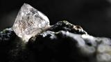 Phát sốt xác sinh vật chết biến thành... kim cương quý nhất hành tinh