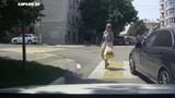 Video: Bị bấm còi, cô gái lao vào đánh tài xế ngay giữa phố