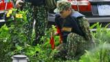 Công binh VN kiểm tra từng bụi cỏ để chuẩn bị thượng đỉnh Mỹ - Triều