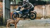 Dân làng bắt giam kẻ trộm chó rồi đánh tới chết ở Gia Lai