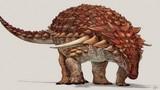 Khủng long ankylosaurs dùng màu da để ngụy trang trốn kẻ thù