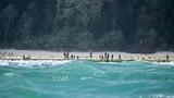 Những hòn đảo đáng sợ nhất thế giới