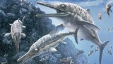 """Phát hiện hóa thạch """"khủng long biển"""" khổng lồ ở Ấn Độ"""