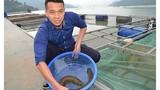 Hành trình vạn dặm tìm về người nuôi loài cá bóng đêm bí ẩn sông Đà