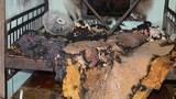Con rể ghen với cha vợ, phóng hoả đốt nhà làm 3 người bị thương