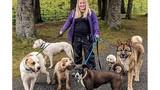 Chuyên gia về chó bị chính chó của mình tấn công kinh hoàng