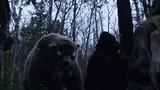 Video quái thú con người chạm trán khi lần đầu đặt chân đến châu Mỹ