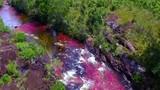 Video: Chiêm ngưỡng dòng sông kỳ lạ đổi màu độc đáo nhất hành tinh