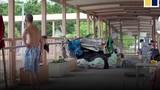 Video: Cuộc sống 'thượng lưu' trên cây cầu bỏ hoang