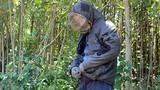 """Dân Quảng Nam xuyên rừng thiêng nước độc săn loài """"ong tử thần"""""""