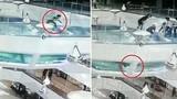 Video: Cô gái ngã xuống bể đầy cá mập ở Trung Quốc