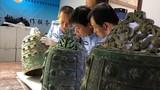 Băng đảng khét tiếng đào trộm mộ gây chấn động Trung Quốc