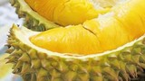 Video: Thực hư việc tử vong vì ăn sầu riêng và uống nước ngọt?
