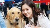 Video: Bận rộn với công việc, người Hàn Quốc cho thú cưng đi học mẫu giáo