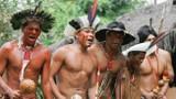Video: Cuộc chiến sinh tồn của 120 người dân bản địa rừng Amazon