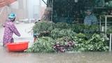 Người dân vật lộn mưu sinh trong trận ngập lụt kinh hoàng ở Phú Quốc