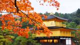 Video: Khám phá mùa thu đẹp hút hồn du khách ở Nhật Bản