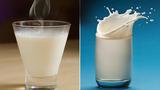 Sữa nóng hoặc sữa lạnh: Cái nào tốt hơn cho sức khỏe?