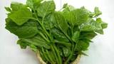 Chữa bệnh cho phái mạnh từ loại rau quen thuộc hàng ngày
