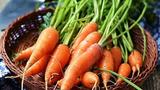 Cà rốt nếu sử dụng theo cách này có thể biến thành độc