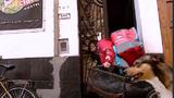 Video: Chàng trai đi giao hàng cùng chú chó cưng ở Argentina