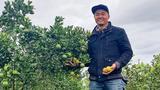 9X Gia Lai về quê khởi nghiệp thu tiền tỷ mỗi năm