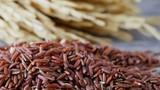 Thời điểm vàng uống nước gạo lứt rang giúp giảm cân