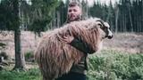 Kiếm tiền tỷ/năm chỉ nhờ nâng cừu