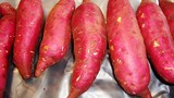 Đau đầu bàn cách xuất khẩu khoai lang, dừa... sang Trung Quốc