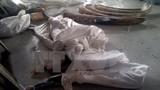TP.HCM phát hiện 529 kg ngà voi giấu tinh vi trong các khúc gỗ