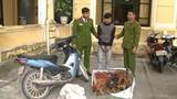 Bị truy nã gắt gao vẫn tranh thủ thực hiện 150 vụ trộm...gà