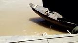 Video: Hoảng hồn cảnh 2 xe lớn bất thình lình lao lên chèn ép xe con