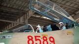 Việt Nam vượt trội hơn toàn bộ Đông Nam Á về số lượng tiêm kích hạng nặng