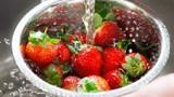 Bí quyết bảo quản trái cây luôn tươi ngon trong mùa hè