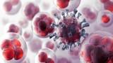 Làm ngay những việc này để phòng ngừa ung thư di truyền