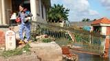 Hình ảnh tan hoang vụ sạt lở nghiêm trọng ven sông Sài Gòn