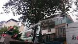 Cháy quán cơm phố Bà Triệu, thực khách tháo chạy toán loạn