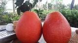Những loại hoa quả thực phẩm tiến vua giá chát gây sốt dịp Tết