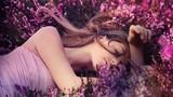 Những loại tinh dầu thơm giúp bạn ngủ ngon