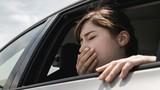 5 cách chống say xe vô cùng hiệu quả mà không cần uống thuốc