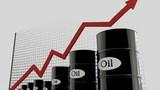 Giá xăng dầu hôm nay 4/7/2019: Giá dầu thế giới tăng cao
