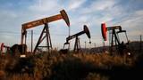 Giá xăng dầu hôm nay 14/7: Giá xăng dầu tăng trưởng trở lại