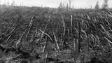 Kinh hoàng siêu vụ nổ chấn động thế giới 100 năm trước